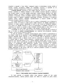 Control Financiar și Expertize Contabile Judiciare - Pagina 5