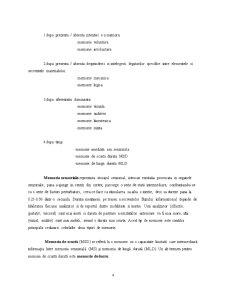 Raport de Cercetare - Test de Memorare si Invatare - Pagina 4