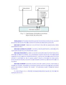 Tehnologii de Procesare a Informației Economice în Sisteme Informatice - Pagina 2