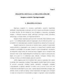 Analiza Imaginii Organizațiilor - Pagina 4