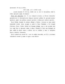 Topografie - Pagina 3