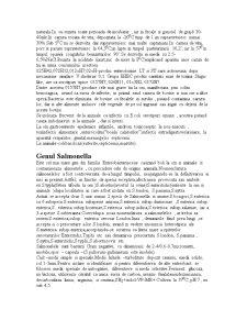 Enterobacteriaceae - Pagina 2