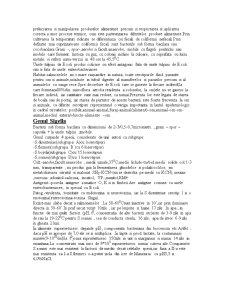 Enterobacteriaceae - Pagina 4
