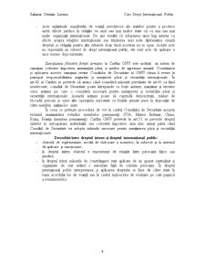 Drept Internațional Public I - Pagina 4