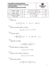 Restabilirea Parametrilor Dimensionali ai Angrenajelor Melcate Cilindrice - Pagina 4