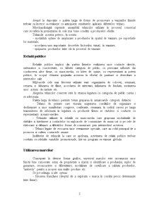 Structura Activitatii Promotionale - Pagina 3