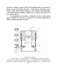 Organele Mobile ale Mecanismului Motor - Pagina 3