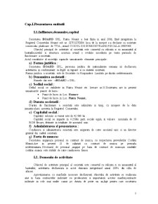 Contabilitatea Societatilor Comerciale - Pagina 3