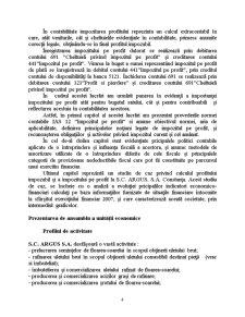 Prevederi ale Standardelor Internaționale de Contabilitate asupra Contabilizării Impozitului pe Profit - Pagina 4