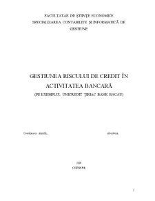 Gestiunea Riscului de Credit în Activitatea Bancară pe Exemplul Unicredit Țiriac Bank Bacau - Pagina 2