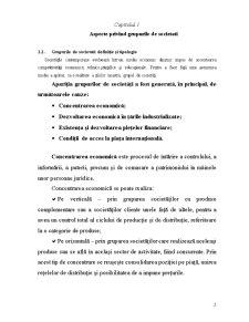 Contabilitatea Grupurilor Multinationale - Pagina 2