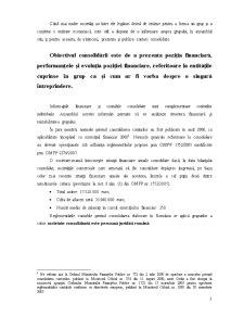 Contabilitatea Grupurilor Multinationale - Pagina 3