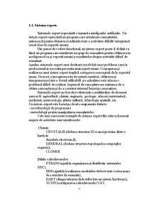 Sisteme Bazate pe Cunostinte - Pagina 2