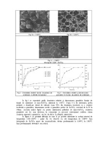 Ceramici Nanostructurate din BaTiO3 - Pagina 2