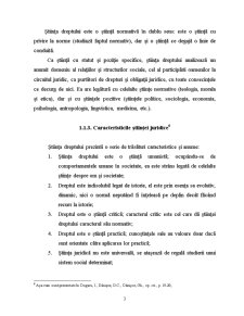 Curs Teoria Generala a Dreptului - Pagina 3
