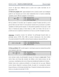 Managementul Performanțelor Bancare - Pagina 3