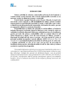 Exploatarea Calcarului la Mina Buciumi - Pagina 3
