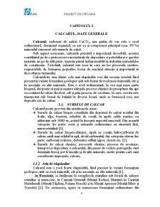 Exploatarea Calcarului la Mina Buciumi - Pagina 4