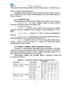 Exploatarea Calcarului la Mina Buciumi - Pagina 5