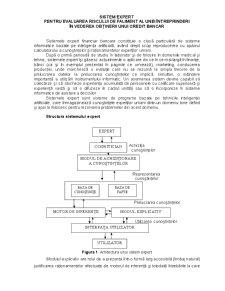 Sistem Expert pentru Evaluarea Riscului de Faliment al unei Întreprinderi în Vederea Obținerii unui Credit Bancar - Pagina 1