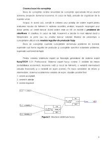 Sistem Expert pentru Evaluarea Riscului de Faliment al unei Întreprinderi în Vederea Obținerii unui Credit Bancar - Pagina 5