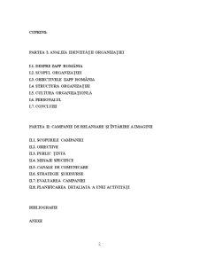 Gestionarea Crizelor de Imagine - Analiza Indentitatii Organizatiei - Zapp Romania - Pagina 2