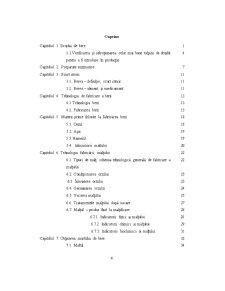 Tehnologia de Fabricare a Berii - Pagina 2
