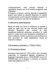 Auditul Financiar al Salariilor - Pagina 5