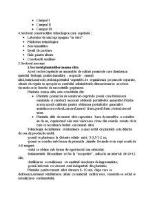 Pepiniera Pomicola - Pagina 3