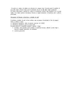 Coroziune - Pagina 4