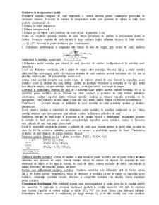 Coroziune - Pagina 5