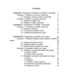 Patrimoniul Societatii Comerciale - Organizarea Fondului de Comert - Pagina 2
