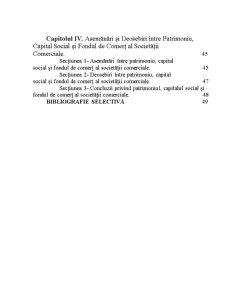 Patrimoniul Societatii Comerciale - Organizarea Fondului de Comert - Pagina 3