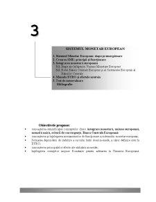 Sistemul Monetar European - Pagina 1