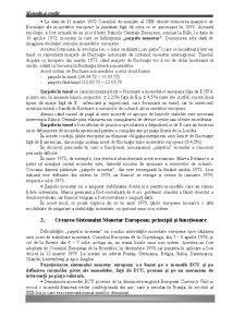 Sistemul Monetar European - Pagina 4