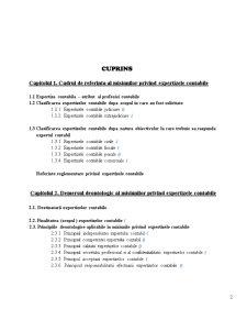 Expertiza Contabila - Pagina 2