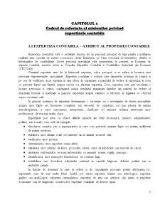 Expertiza Contabila - Pagina 3