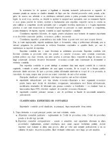 Expertiza Contabila - Pagina 4