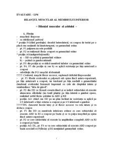 Bilantul Muscular al Membrului Inferior - Bilantul Muscular al Soldului - Pagina 1