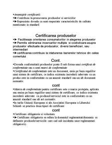 Standardizarea Europeana - Pagina 5