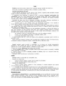 Poluarea Aerului - Pagina 5