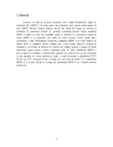 Standardul MPEG4 - Pagina 3