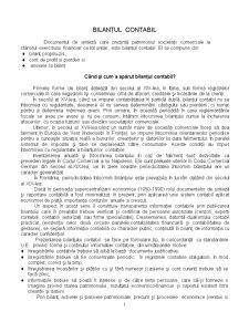 Bilant Contabil - Pagina 1