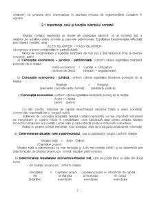 Bilant Contabil - Pagina 2