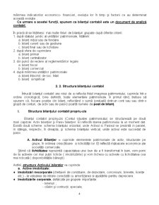 Bilant Contabil - Pagina 4