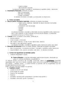 Bilant Contabil - Pagina 5