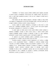 Contabilitatea Terenurilor si Mijloacelor Fixe IAS 16 - Contabilitate Aprofundata - Pagina 3