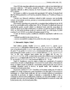 Tehnologia și Cultura Inului pentru Ulei - Pagina 2