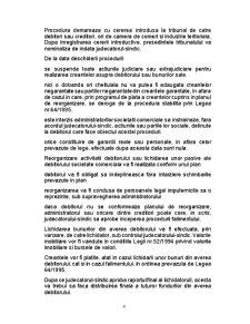 Contabilitatea Lichidarii si Fuziunii Societatilor Comerciale - Pagina 4