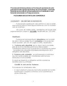 Contabilitatea Lichidarii si Fuziunii Societatilor Comerciale - Pagina 5